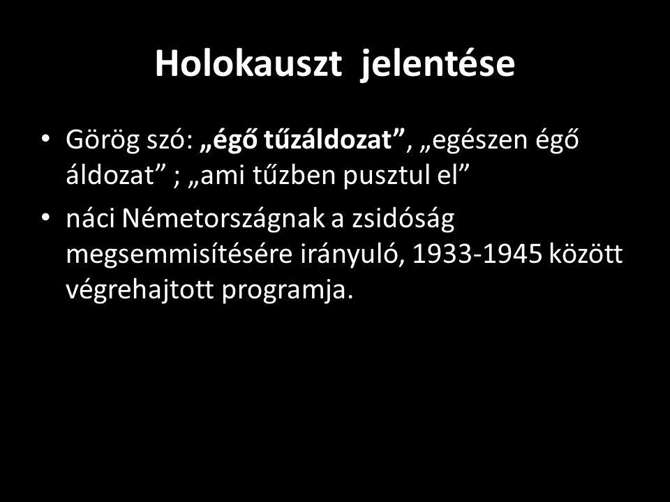 """A nácik véleménye a magyar deportálásokról A """"zsidótlanítást végrehajtó magyar szervek viselkedése még Adolf Eichmann SS-alezredest is elképesztették."""