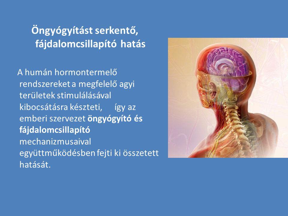 Öngyógyítást serkentő, fájdalomcsillapító hatás A humán hormontermelő rendszereket a megfelelő agyi területek stimulálásával kibocsátásra készteti, íg