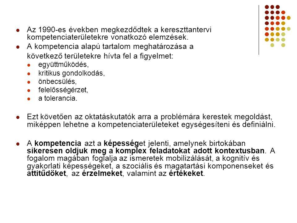 Az 1990-es években megkezdődtek a kereszttantervi kompetenciaterületekre vonatkozó elemzések.
