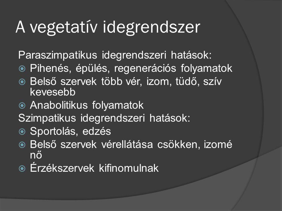 A vegetatív idegrendszer Paraszimpatikus idegrendszeri hatások:  Pihenés, épülés, regenerációs folyamatok  Belső szervek több vér, izom, tüdő, szív kevesebb  Anabolitikus folyamatok Szimpatikus idegrendszeri hatások:  Sportolás, edzés  Belső szervek vérellátása csökken, izomé nő  Érzékszervek kifinomulnak