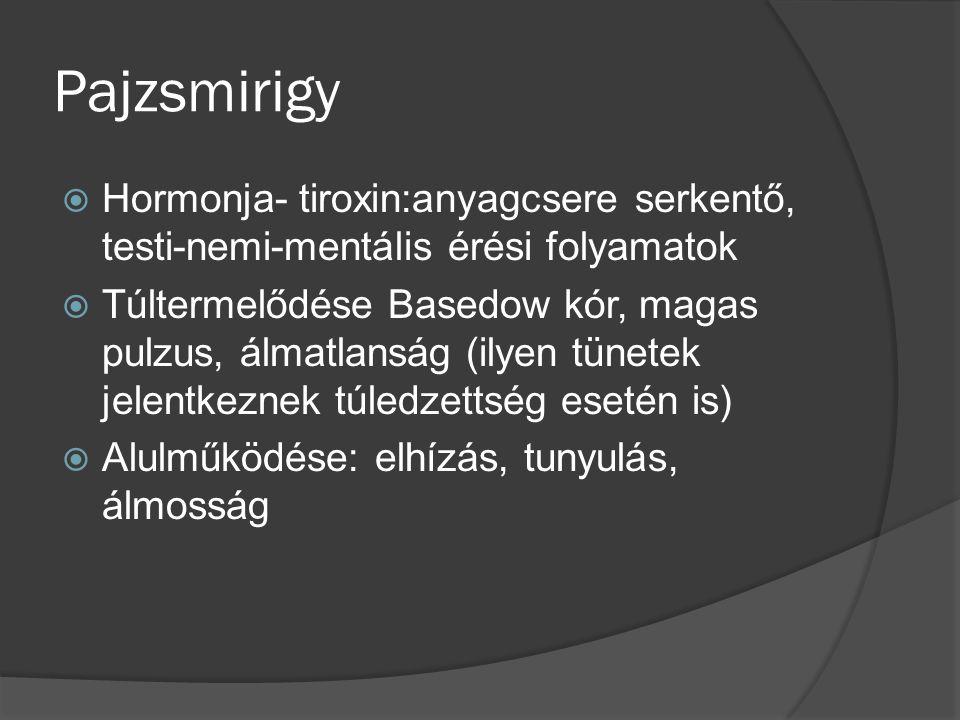 Pajzsmirigy  Hormonja- tiroxin:anyagcsere serkentő, testi-nemi-mentális érési folyamatok  Túltermelődése Basedow kór, magas pulzus, álmatlanság (ilyen tünetek jelentkeznek túledzettség esetén is)  Alulműködése: elhízás, tunyulás, álmosság