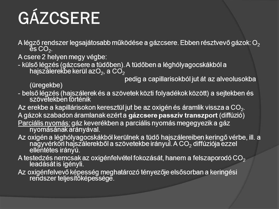 GÁZCSERE A légző rendszer legsajátosabb működése a gázcsere. Ebben résztvevő gázok: O 2 és CO 2. A csere 2 helyen megy végbe: - külső légzés (gázcsere