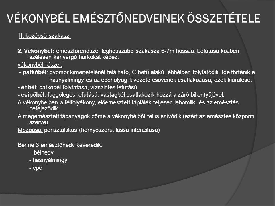 VÉKONYBÉL EMÉSZTŐNEDVEINEK ÖSSZETÉTELE II.középső szakasz: 2.