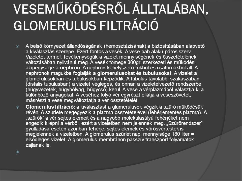 VESEMŰKÖDÉSRŐL ÁLLTALÁBAN, GLOMERULUS FILTRÁCIÓ  A belső környezet állandóságának (hemosztázisának) a biztosításában alapvető a kiválasztás szerepe.