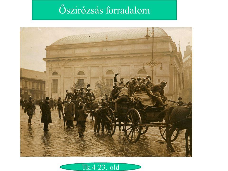 Őszirózsás forradalom Tk.4-23. old