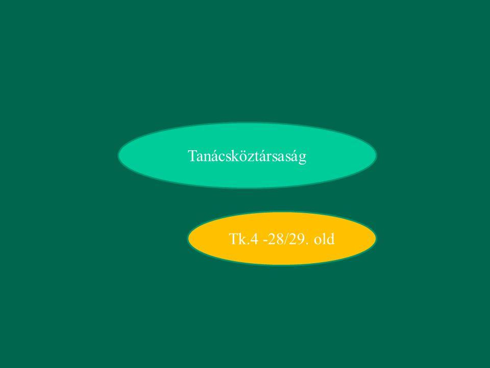 Tanácsköztársaság Tk.4 -28/29. old
