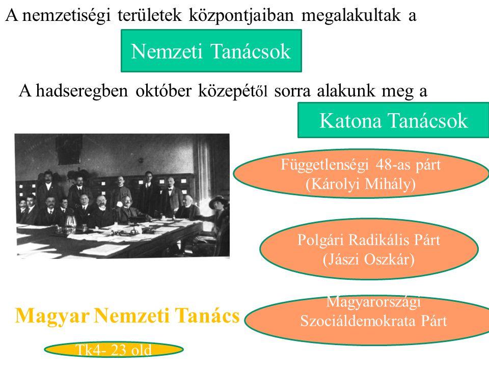 Nemzeti Tanácsok A nemzetiségi területek központjaiban megalakultak a A hadseregben október közepét ől sorra alakunk meg a Katona Tanácsok Magyar Nemz