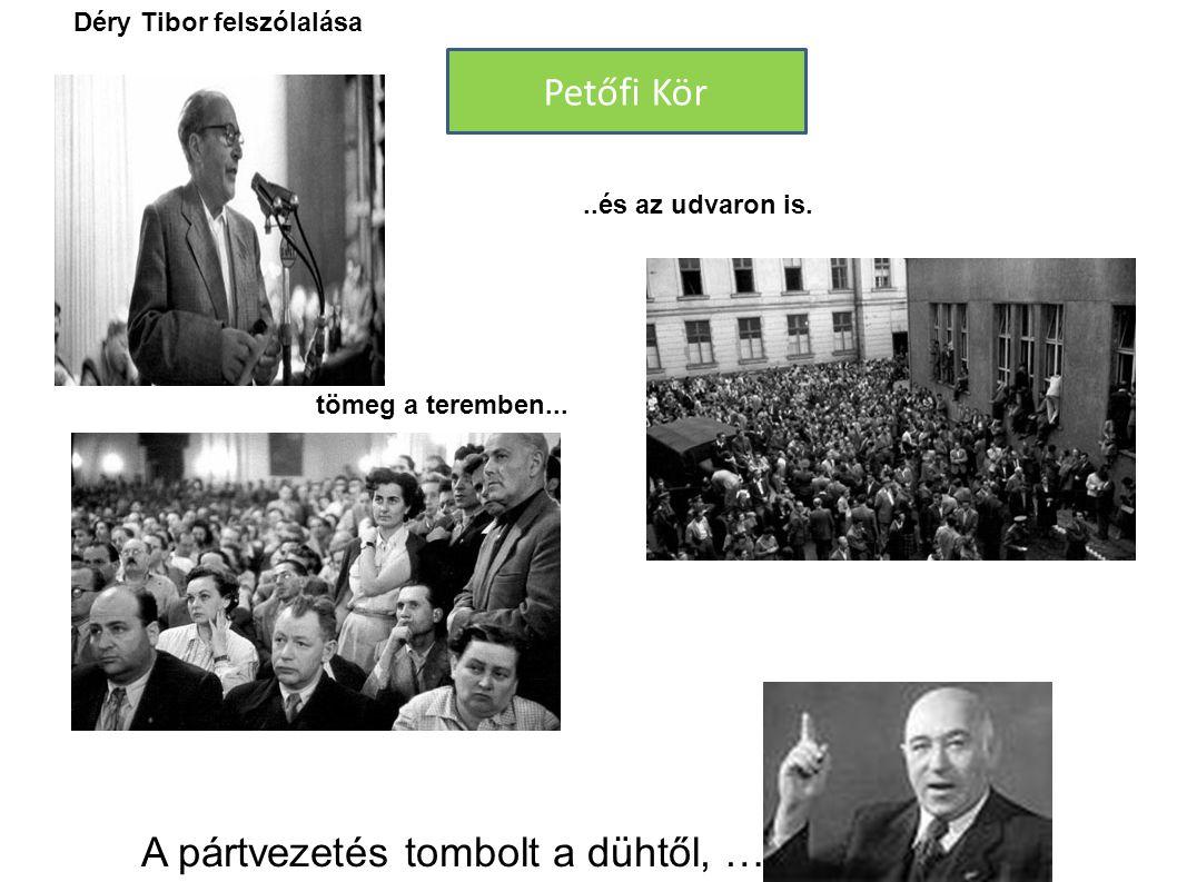 tömeg a teremben.....és az udvaron is. A pártvezetés tombolt a dühtől, … Petőfi Kör Déry Tibor felszólalása