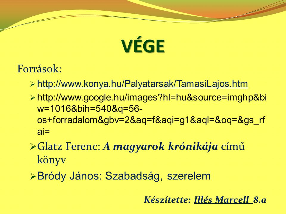 VÉGE Források:  http://www.konya.hu/Palyatarsak/TamasiLajos.htm http://www.konya.hu/Palyatarsak/TamasiLajos.htm  http://www.google.hu/images?hl=hu&s