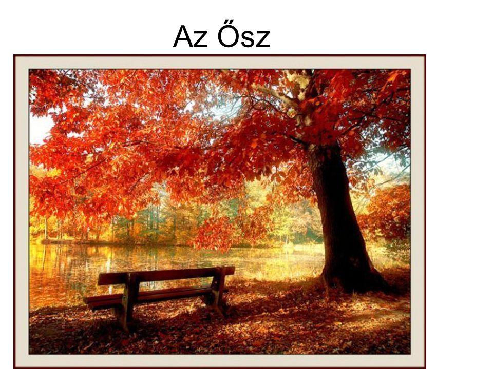 Az Ősz