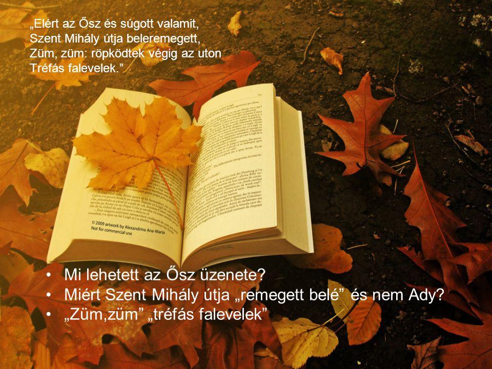 """""""Elért az Ősz és súgott valamit, Szent Mihály útja beleremegett, Züm, züm: röpködtek végig az uton Tréfás falevelek."""" Mi lehetett az Ősz üzenete? Miér"""