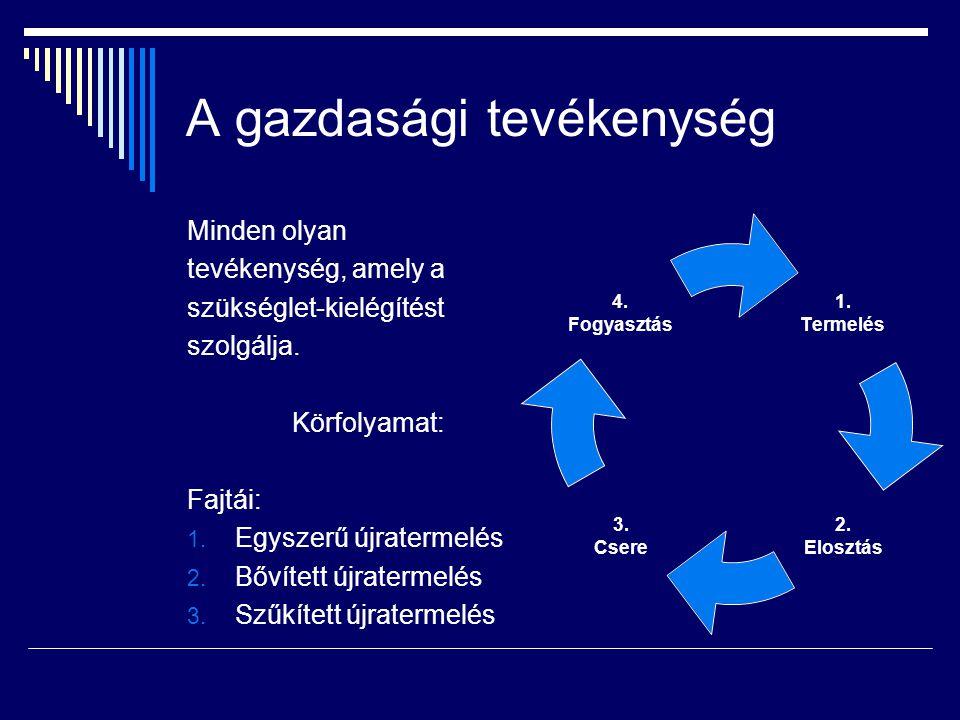 A gazdasági tevékenység Minden olyan tevékenység, amely a szükséglet-kielégítést szolgálja.