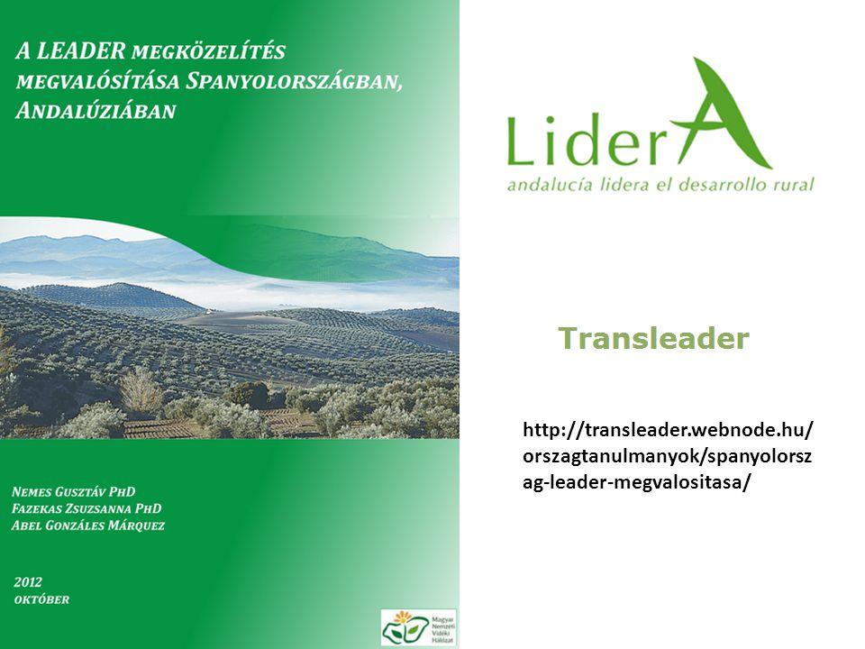 TRANSLEADER Andalúziában 2 magyar és 1 spanyol szakértő; Megelőző tapasztalat, spanyol nyelvtudás; 7 nap kutatás 10 interjú, 2HACS, IH, regionális és nemzeti networkok, stb.