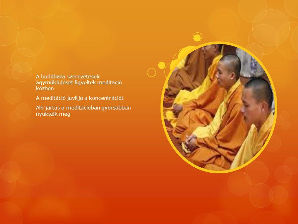 A buddhista szerezetesek agyműködését figyelték meditáció közben A meditáció javitja a koncentrációt Aki jártas a meditációban gyorsabban nyukszik meg