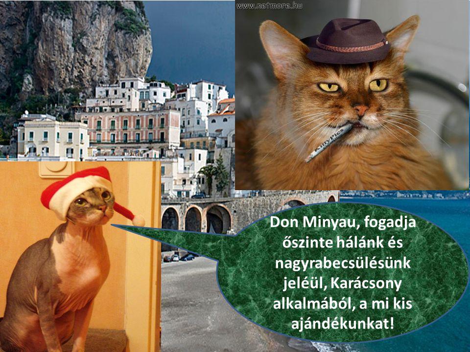Don Minyau, fogadja őszinte hálánk és nagyrabecsülésünk jeléül, Karácsony alkalmából, a mi kis ajándékunkat!