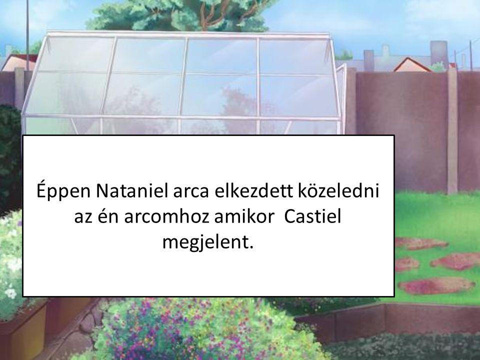 Éppen Nataniel arca elkezdett közeledni az én arcomhoz amikor Castiel megjelent.