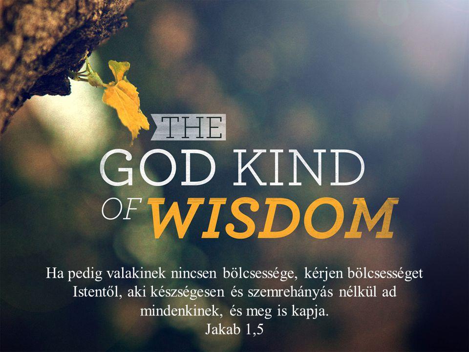 Ha pedig valakinek nincsen bölcsessége, kérjen bölcsességet Istentől, aki készségesen és szemrehányás nélkül ad mindenkinek, és meg is kapja. Jakab 1,