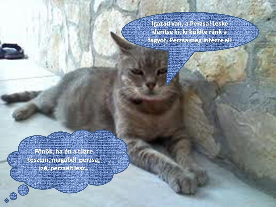 Igazad van, a Perzsa. Leske derítse ki, ki küldte ránk a fagyot, Perzsa meg intézze el.