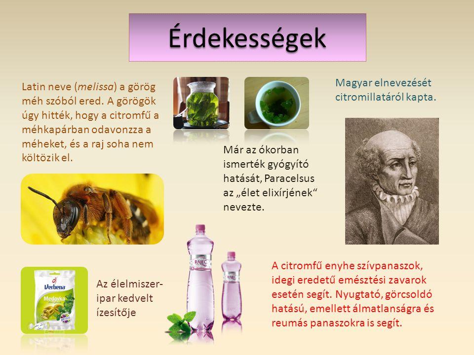 Érdekességek Latin neve (melissa) a görög méh szóból ered.