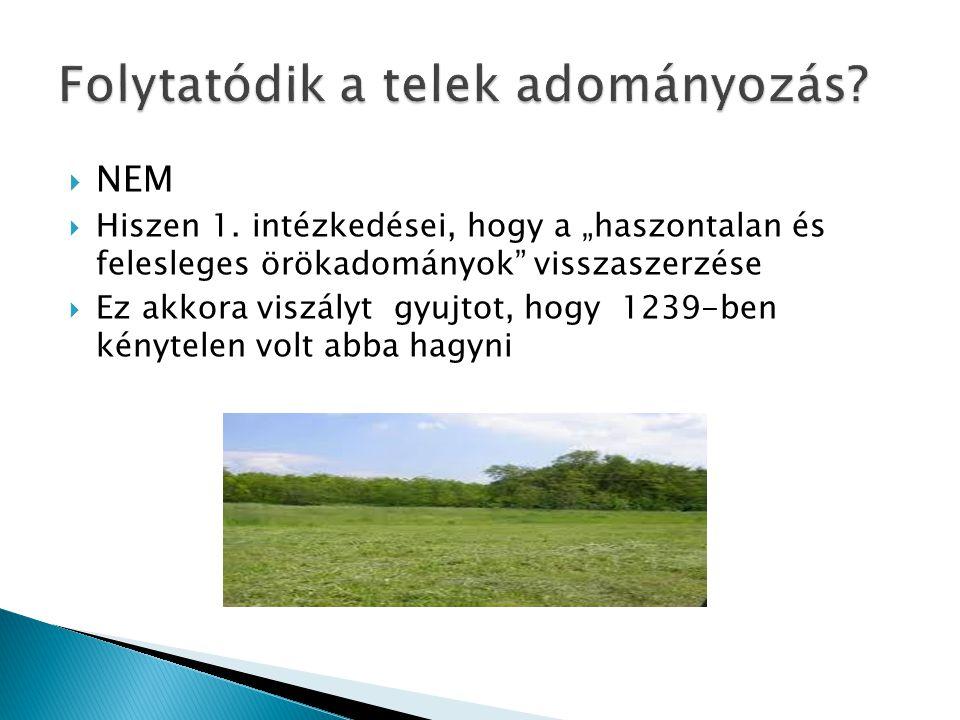  NEM  Hiszen 1.
