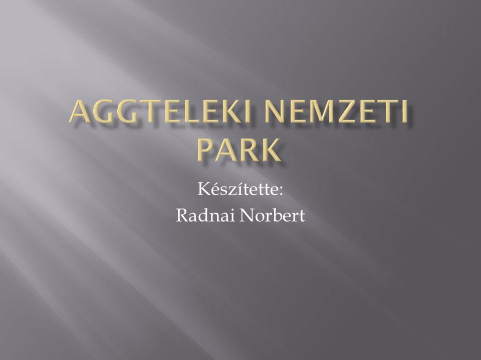 Készítette: Radnai Norbert