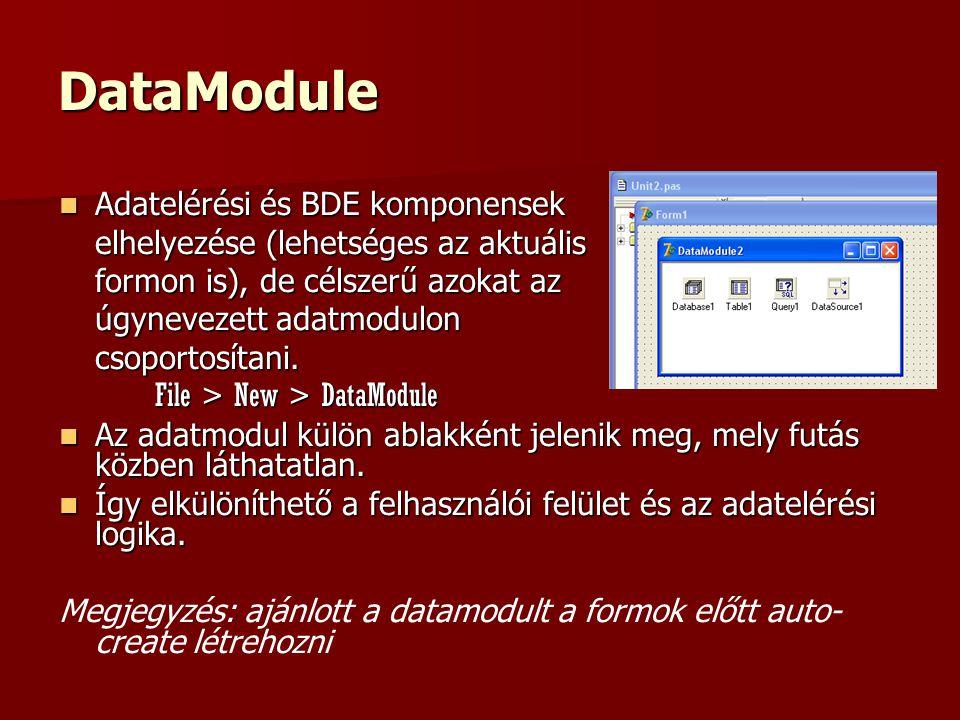 DataModule Adatelérési és BDE komponensek Adatelérési és BDE komponensek elhelyezése (lehetséges az aktuális formon is), de célszerű azokat az úgynevezett adatmodulon csoportosítani.