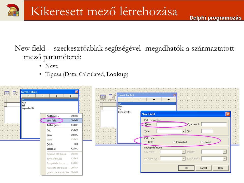 Delphi programozás Kikeresett mező létrehozása New field – szerkesztőablak segítségével megadhatók a származtatott mező paraméterei: Neve Típusa (Data, Calculated, Lookup)
