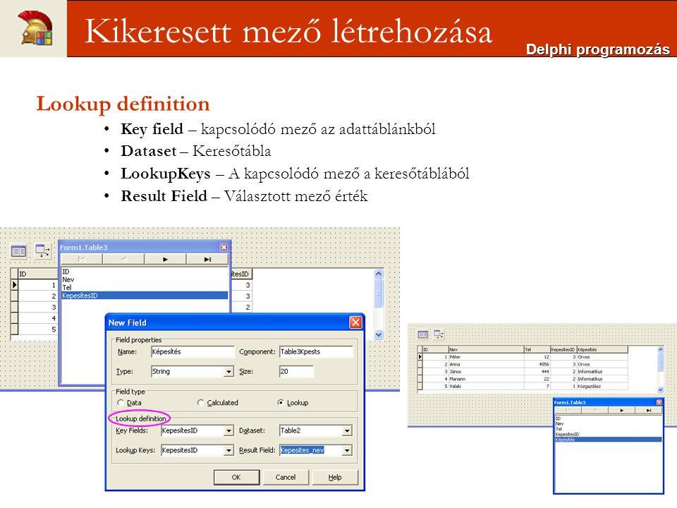 Delphi programozás Kikeresett mező létrehozása Lookup definition Key field – kapcsolódó mező az adattáblánkból Dataset – Keresőtábla LookupKeys – A kapcsolódó mező a keresőtáblából Result Field – Választott mező érték