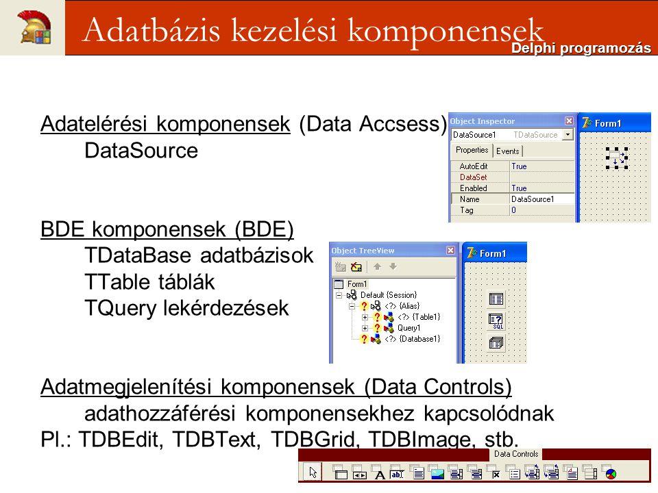Adatelérési komponensek (Data Accsess) DataSource BDE komponensek (BDE) TDataBase adatbázisok TTable táblák TQuery lekérdezések Adatmegjelenítési komponensek (Data Controls) adathozzáférési komponensekhez kapcsolódnak Pl.: TDBEdit, TDBText, TDBGrid, TDBImage, stb.
