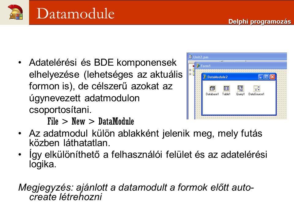 Adatelérési és BDE komponensek elhelyezése (lehetséges az aktuális formon is), de célszerű azokat az úgynevezett adatmodulon csoportosítani.