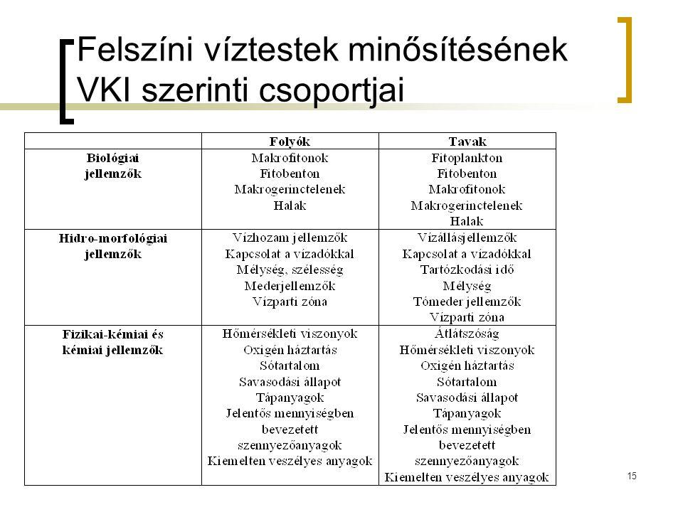 Felszíni víztestek minősítésének VKI szerinti csoportjai 15