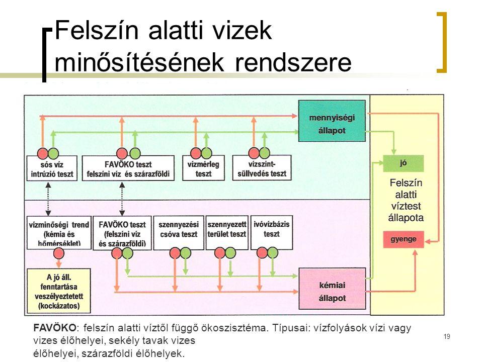Felszín alatti vizek minősítésének rendszere 19 FAVÖKO: felszín alatti víztől függő ökoszisztéma.