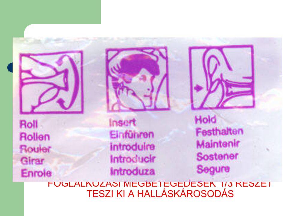 HALLÁSVÉDELEM 66/2005. EÜM RENDELET A MUNKAVÁLLALÓKAT ÉRŐ ZAJEXPOZÍCIÓRA VONATKOZÓ MINIMÁLIS EGÉSZSÉGI ÉS BIZTONSÁGI KÖVETELMÉNYEKRŐL VEZETÉSES, ÉRZŐI