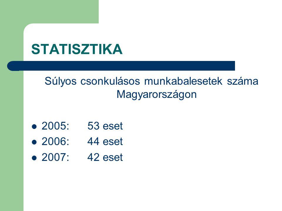 STATISZTIKA Egyéb súlyos munkabalesetek száma Magyarországon 2005:60 eset 2006:48 eset 2007:51 eset