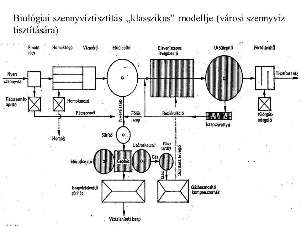Biológiai műveletek Mikroorganizmusok, sejt – és szövettenyészetek felhasználása műszaki feladatok megoldására. A biológiai műveletek gazdaságosan nem