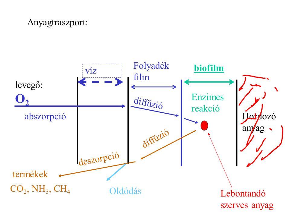 A szervetlen összetevők (elsősorban NH + 4 ) oxidációja autotrof mikroorganizmusokkal.
