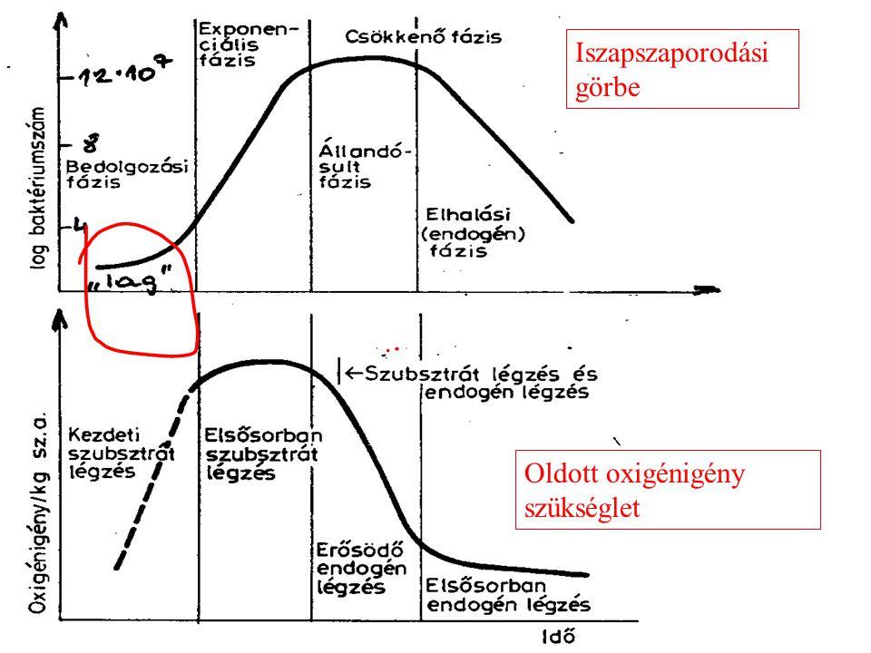 Biokémiai reakciók.