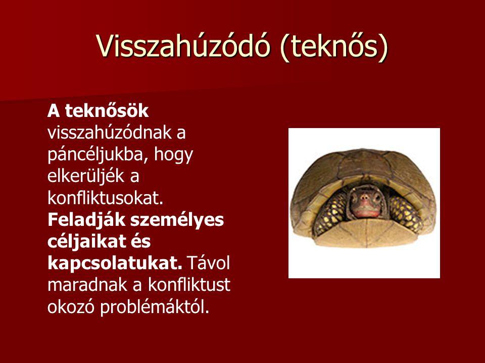 Visszahúzódó (teknős) A teknősök visszahúzódnak a páncéljukba, hogy elkerüljék a konfliktusokat.