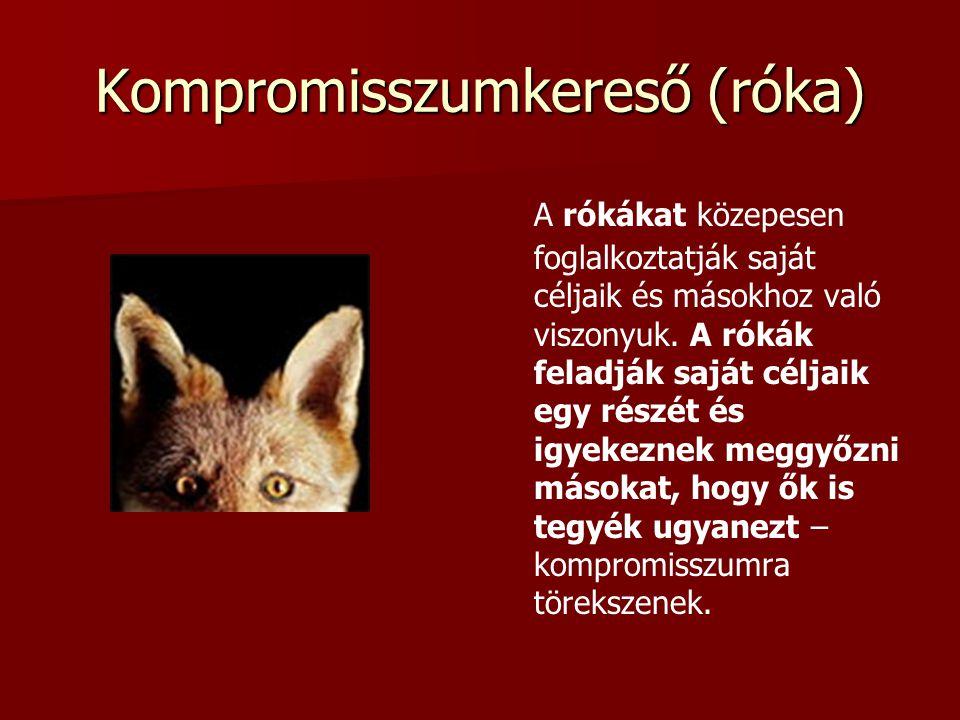 Kompromisszumkereső (róka) A rókákat közepesen foglalkoztatják saját céljaik és másokhoz való viszonyuk.