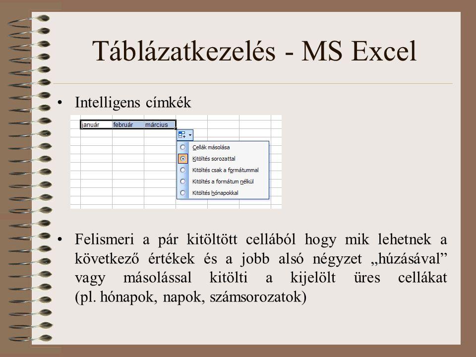 """Táblázatkezelés - MS Excel Intelligens címkék Felismeri a pár kitöltött cellából hogy mik lehetnek a következő értékek és a jobb alsó négyzet """"húzásáv"""