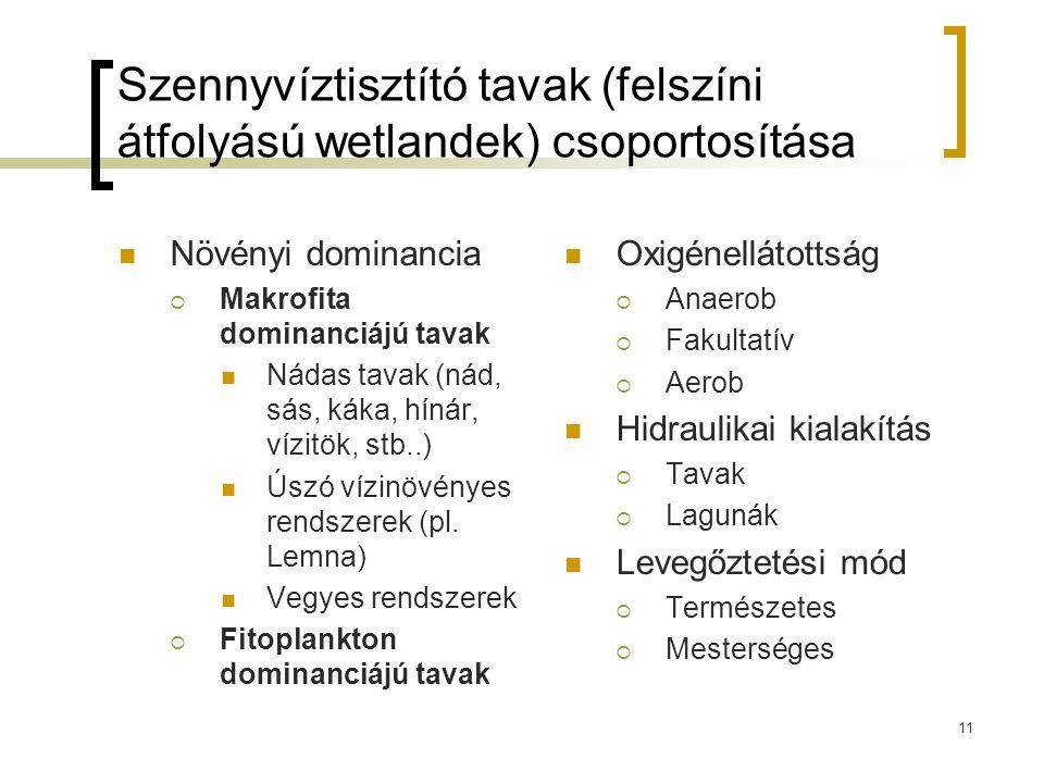 Szennyvíztisztító tavak (felszíni átfolyású wetlandek) csoportosítása Növényi dominancia  Makrofita dominanciájú tavak Nádas tavak (nád, sás, káka, hínár, vízitök, stb..) Úszó vízinövényes rendszerek (pl.