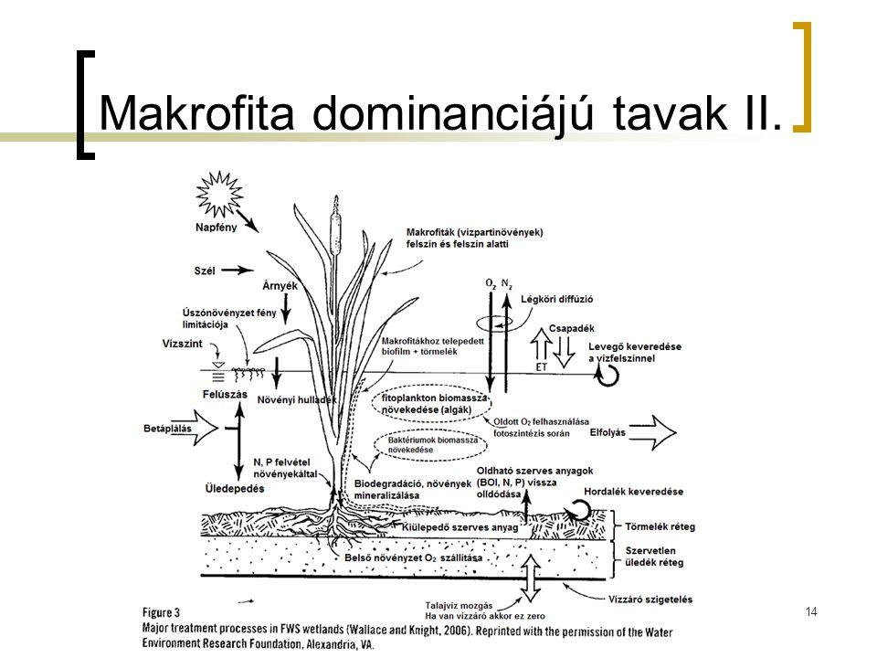 14 Makrofita dominanciájú tavak II.
