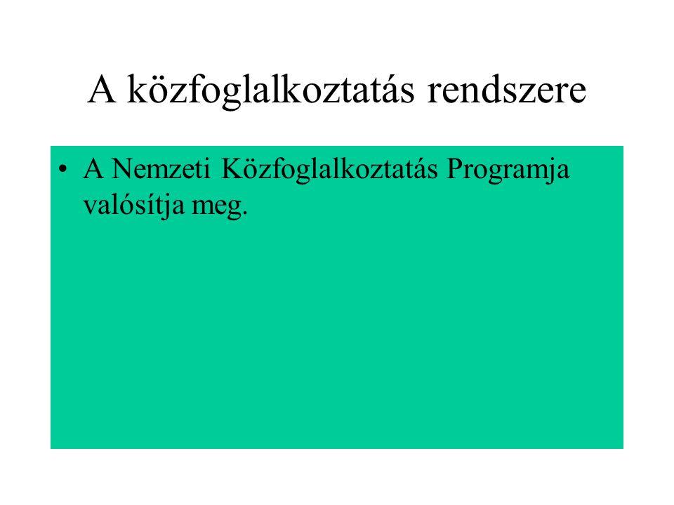 A közfoglalkoztatás rendszere A Nemzeti Közfoglalkoztatás Programja valósítja meg.