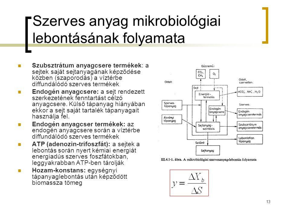 13 Szerves anyag mikrobiológiai lebontásának folyamata Szubsztrátum anyagcsere termékek: a sejtek saját sejtanyagának képződése közben (szaporodás) a víztérbe diffundálódó szerves termékek Endogén anyagcsere: a sejt rendezett szerkezetének fenntartást célzó anyagcsere.