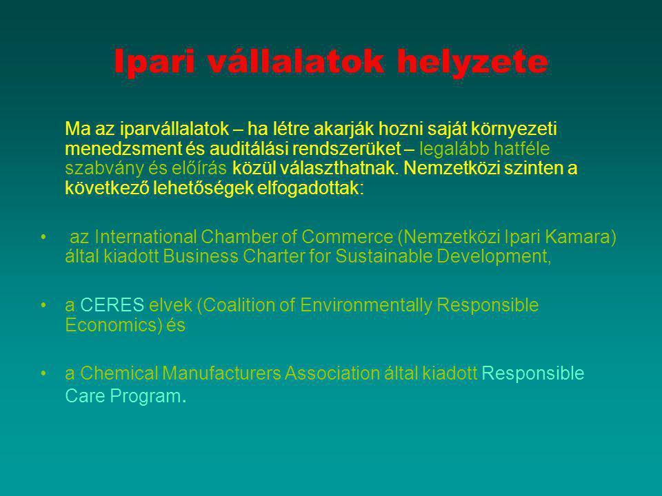 Ipari vállalatok helyzete Ma az iparvállalatok – ha létre akarják hozni saját környezeti menedzsment és auditálási rendszerüket – legalább hatféle sza
