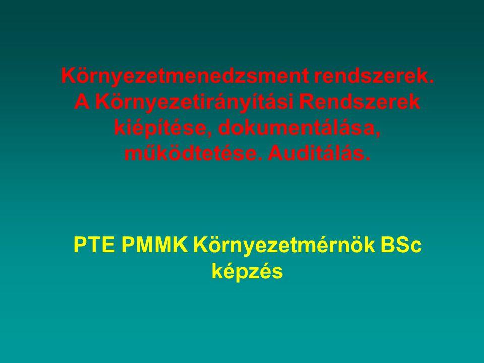 Motiváció Elkötelezettség és politika Tervezés Bevezetés és működés Ellenőrző és helyesbítő tevékenység Átvizsgálás és javítás ELŐADÁS ÁTTEKINTÉSE