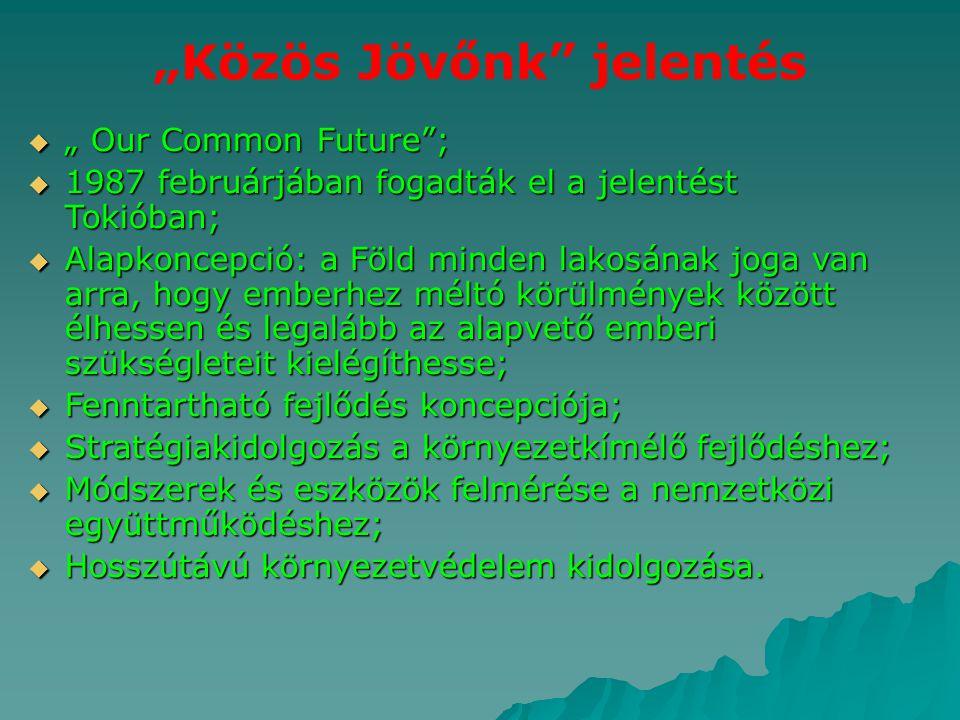 """""""Közös Jövőnk"""" jelentés  """" Our Common Future"""";  1987 februárjában fogadták el a jelentést Tokióban;  Alapkoncepció: a Föld minden lakosának joga va"""