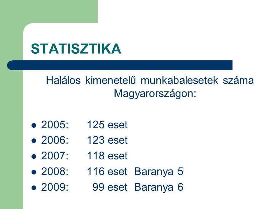 STATISZTIKA Halálos kimenetelű munkabalesetek száma Magyarországon: 2005:125 eset 2006:123 eset 2007:118 eset 2008: 116 eset Baranya 5 2009: 99 eset B