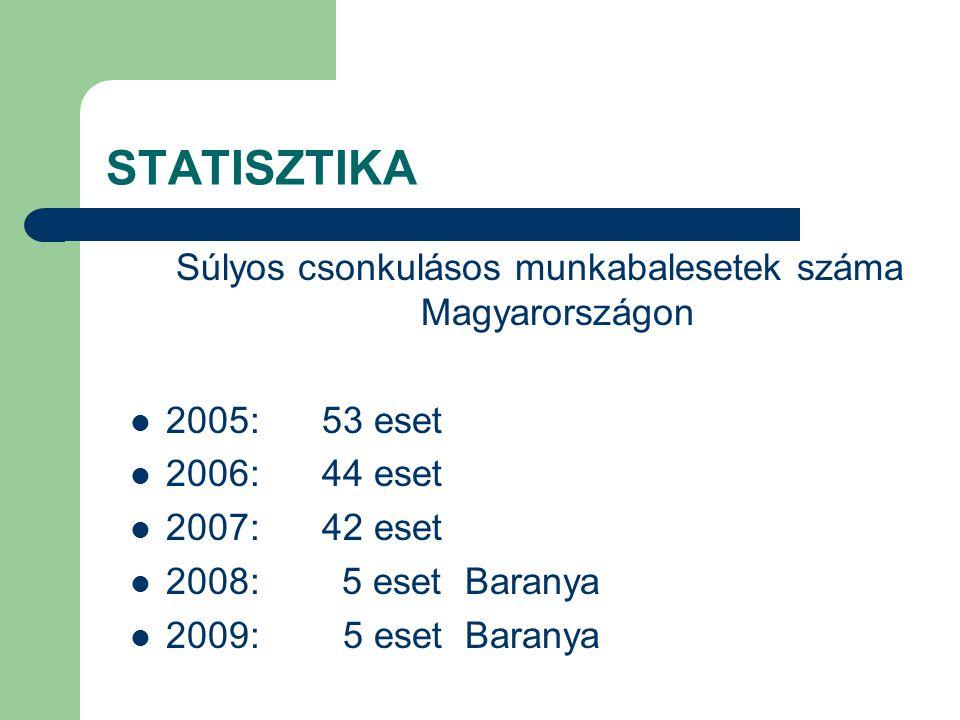 STATISZTIKA Egyéb súlyos munkabalesetek száma Magyarországon 2005:60 eset 2006:48 eset 2007:51 eset 2008: 1 eset Baranya 2009: 1 eset Baranya