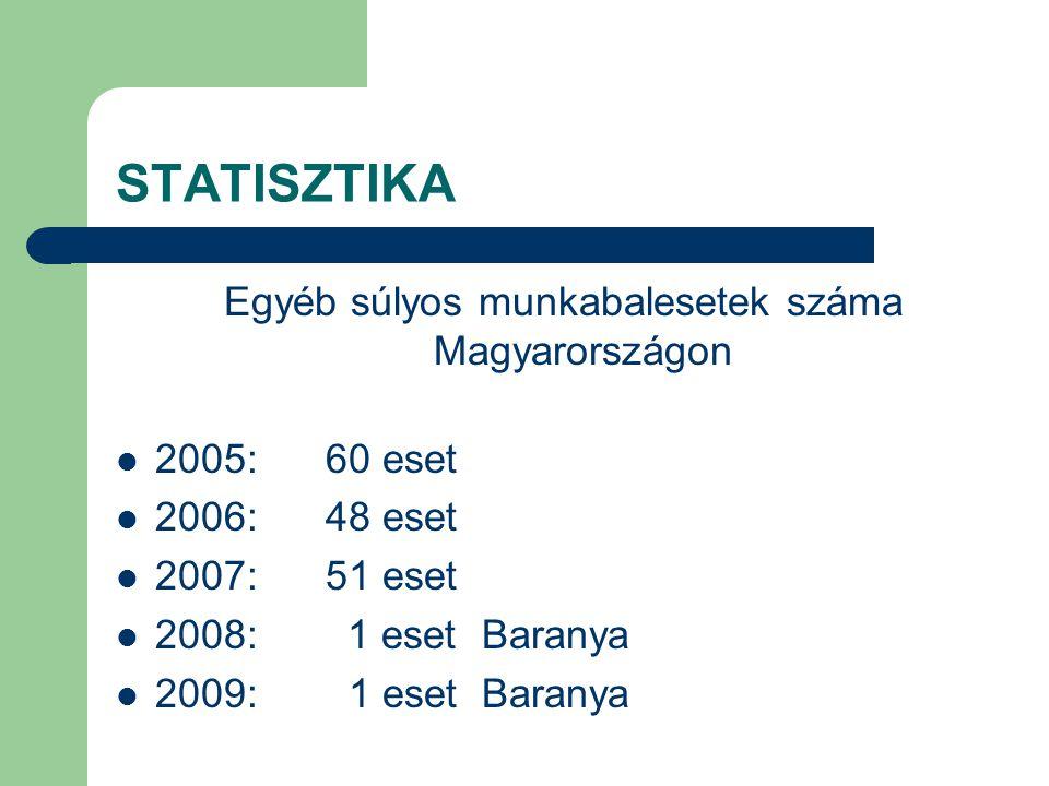 AZ ÉPÍTŐIPAR STATISZTIKÁJA Munkabalesetek száma: 2005:1380 eset 2006:1445 eset 2007:1298 eset 2008:1314 eset 45 halálos (országos) 2009:1093 eset 30 halálos (országos) .